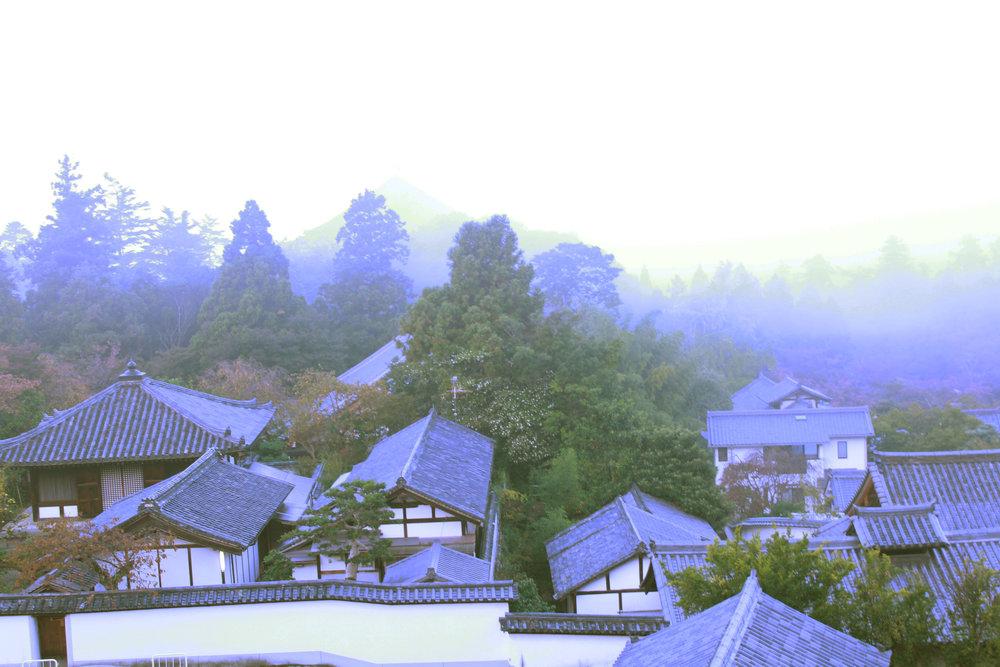 Nara in Fog.jpg