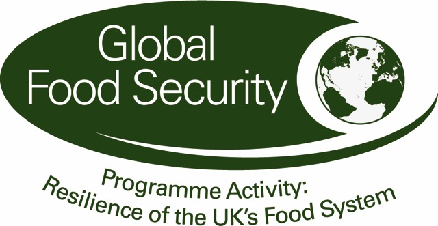 Resilience of the UK to Global shocks logo