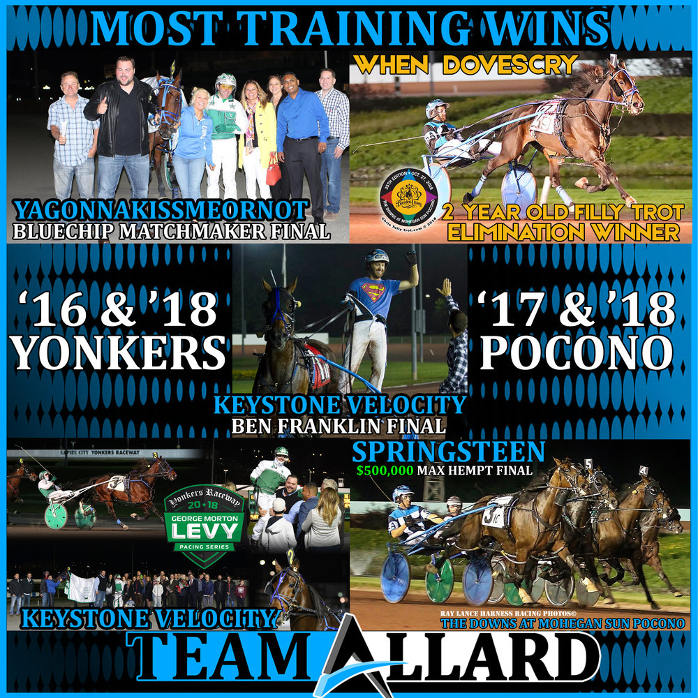 TRAINING titles poster website.jpg