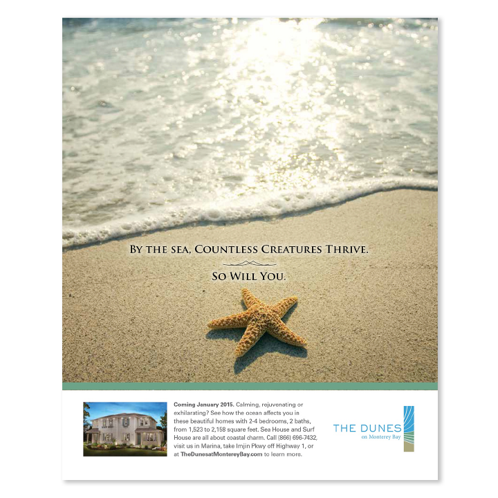 The Dunes starfish at the beach print advertisement