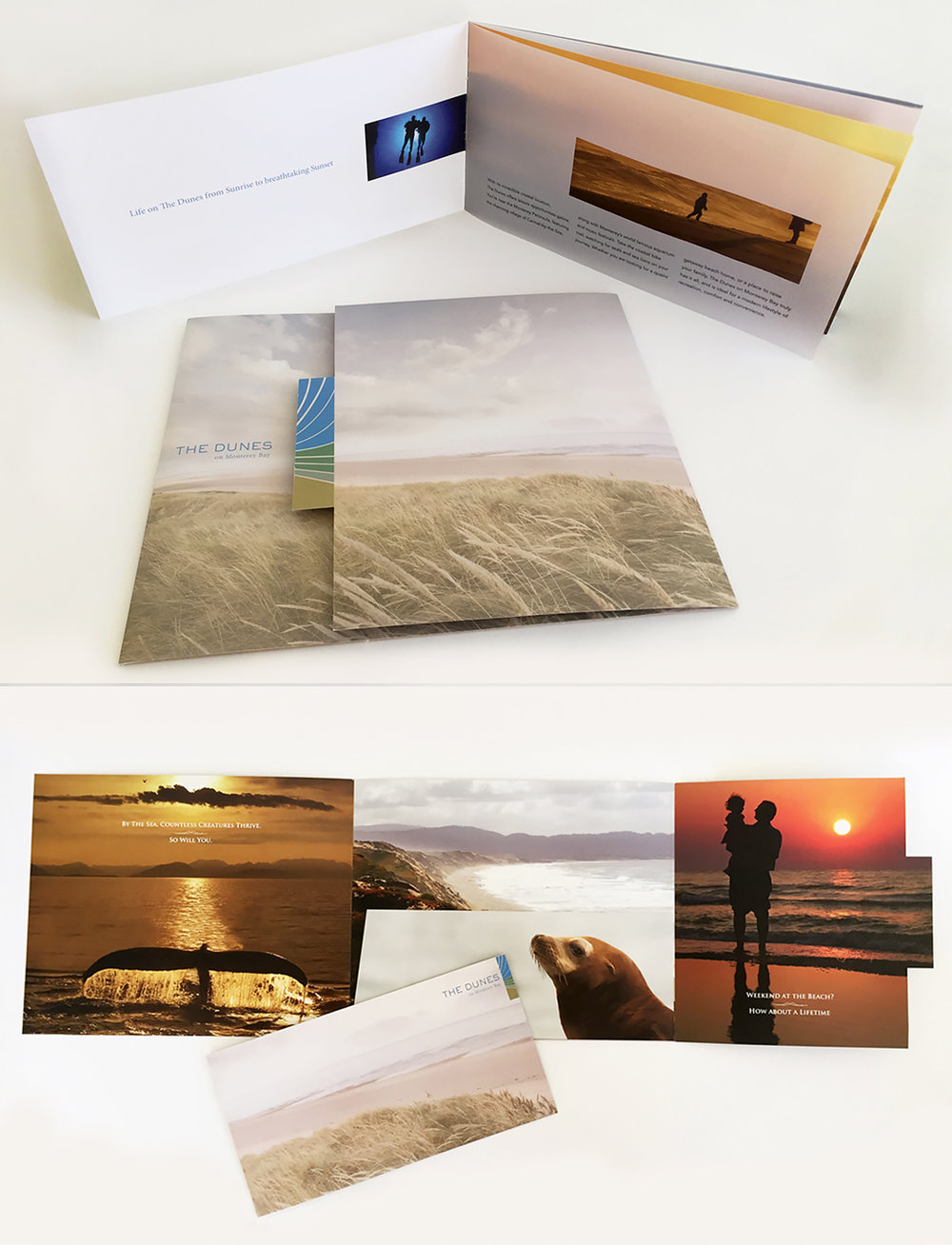Marketing collateral and brochure The Dunes