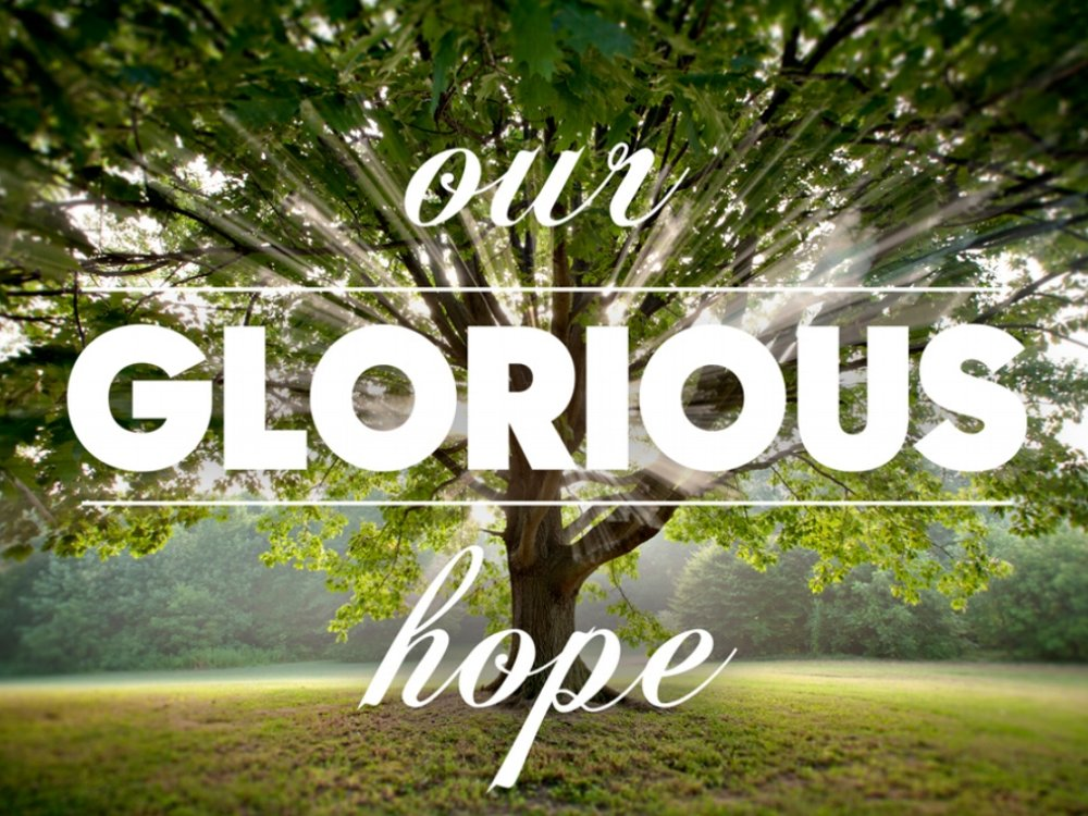 Our Glorious Hope: July 31 - August 28