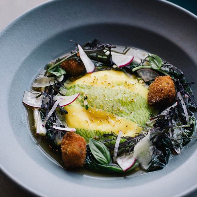 First of chef @kjacovino new spring menu: ramp laminated pasta dough stuffed with ricotta and a whole egg yolk, pig head broth, souse croutons, wild ramps, raw turnips & radish. #eatitalian
