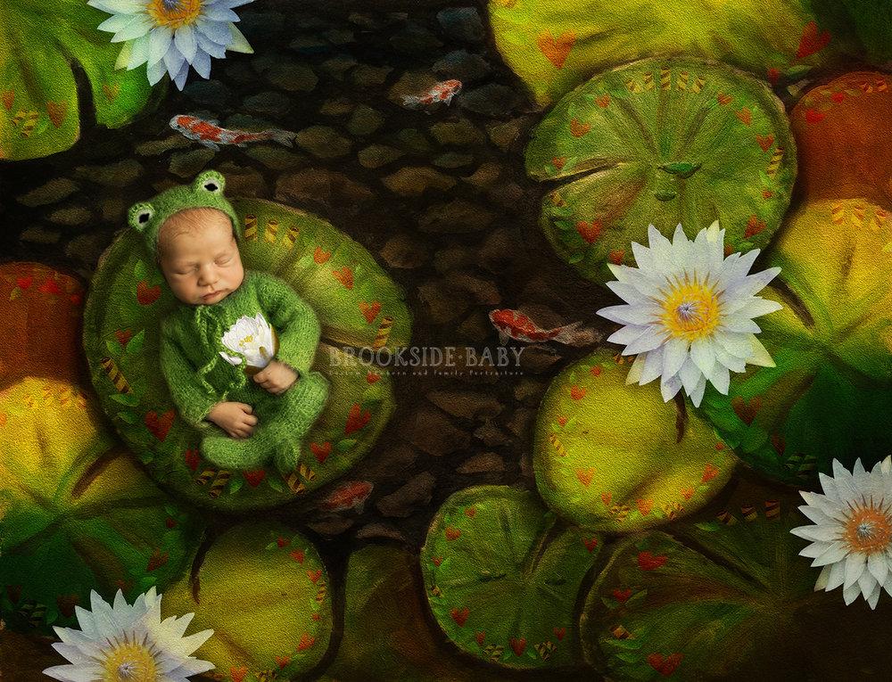 froggie 6 web.jpg