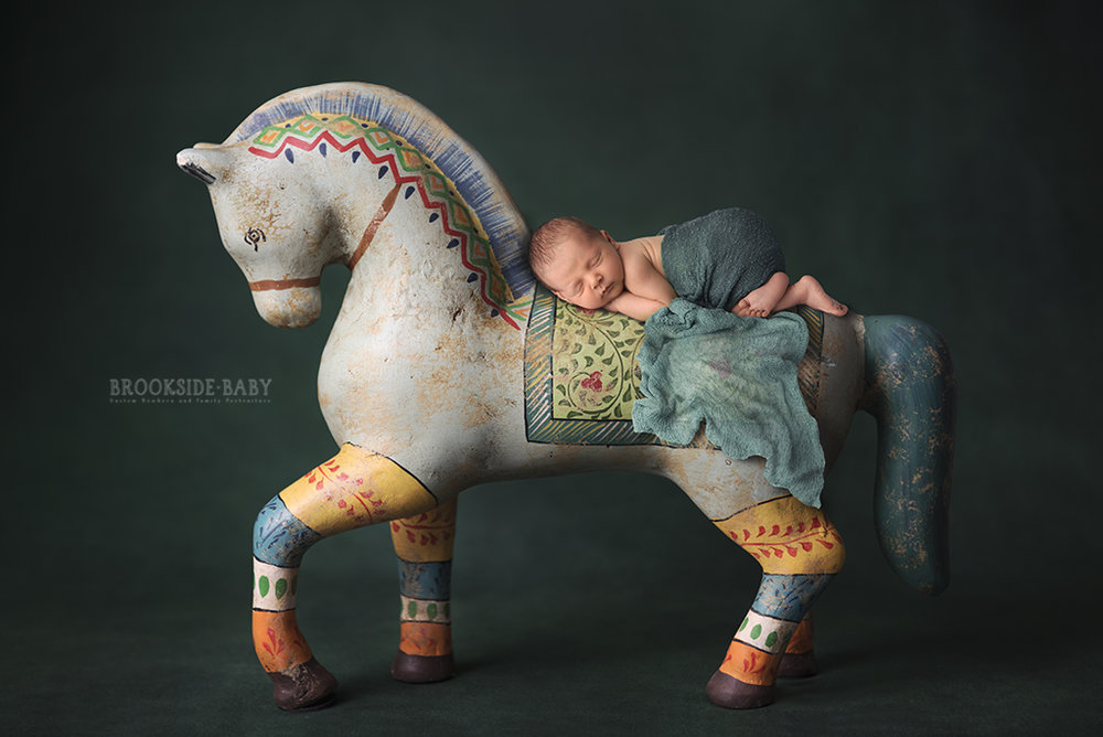 horse composite web.jpg