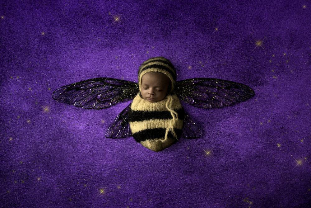 royal bee golden.jpg