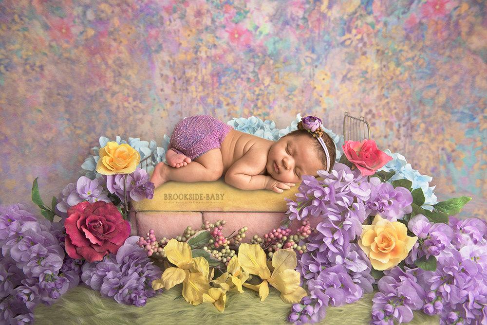 Violet LaSorsa Newborn-3web.jpg