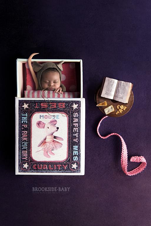 Violet LaSorsa Newborn-9a web.jpg