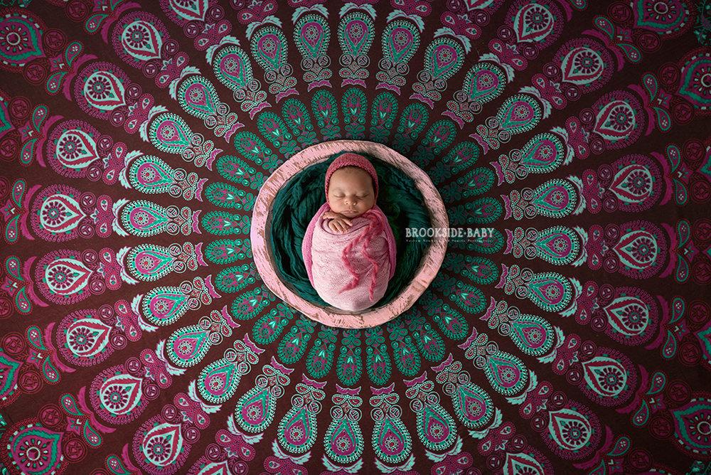 Violet LaSorsa Newborn-13 copy web.jpg