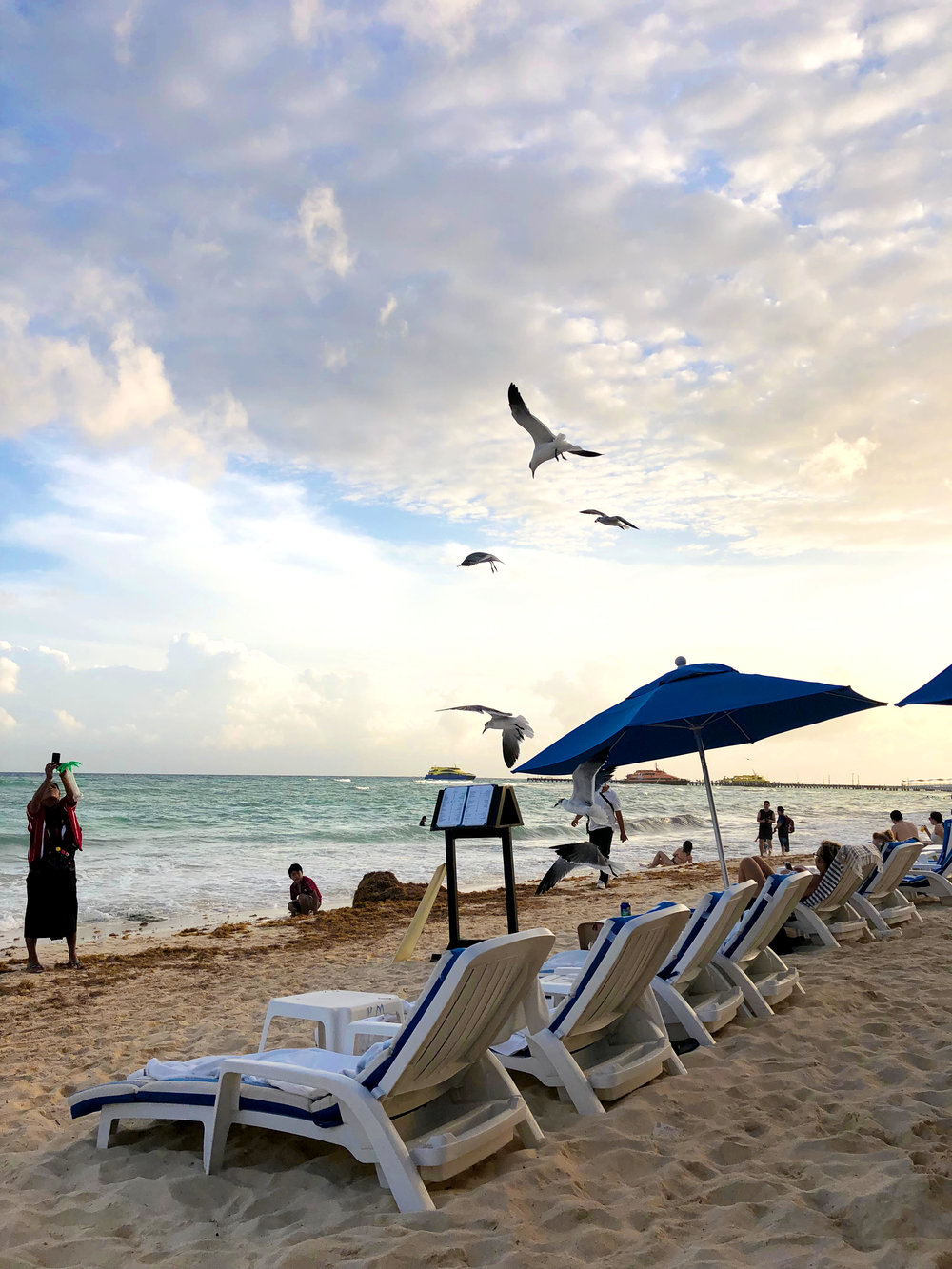 Playa del Carmen's beach. Lovely sunset views with seagulls flying over the Caribbean sea.