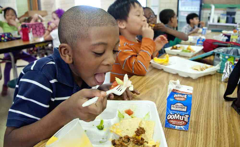 Elementary-School-Boy-Eating-Lunch-Public-Domain-Amanda-Mills-USCDCP.jpg