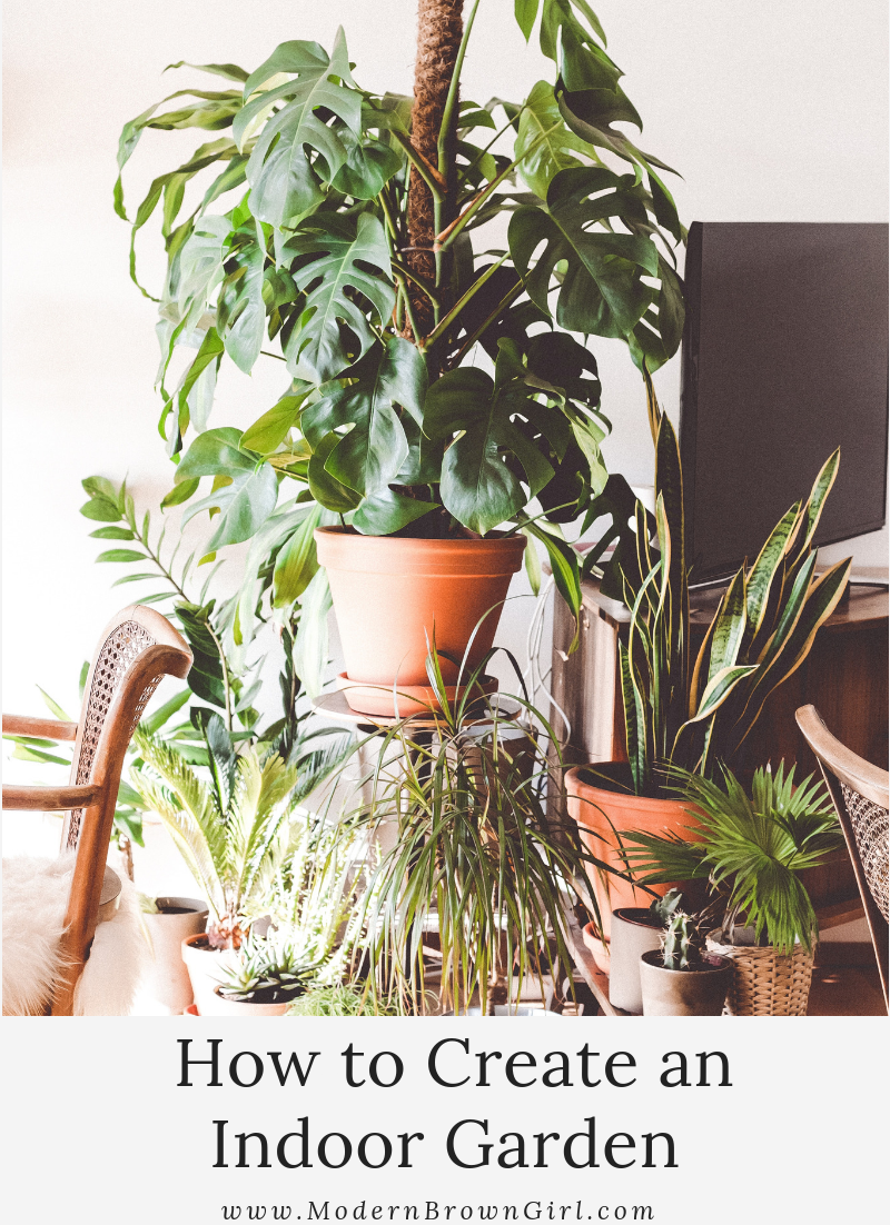 How to create an indoor garden