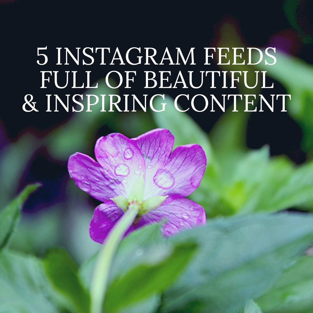 5 Instagram Feeds Full Of Beautiful & Inspiring Content
