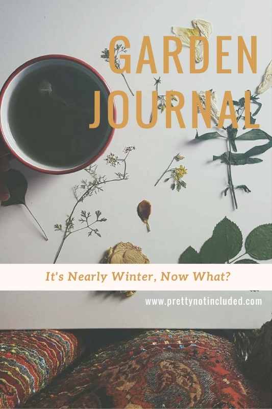 Garden Journal: It's nearly winter, now what? The second installment of my garden journal talks about the plight of being a beginniner and not satisfying that gardening fix over the colder months. I managed to find 6 ways to keep me occupied though.