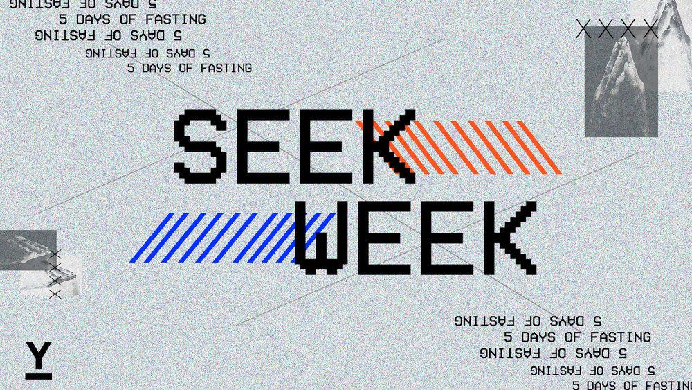 seek212.jpg