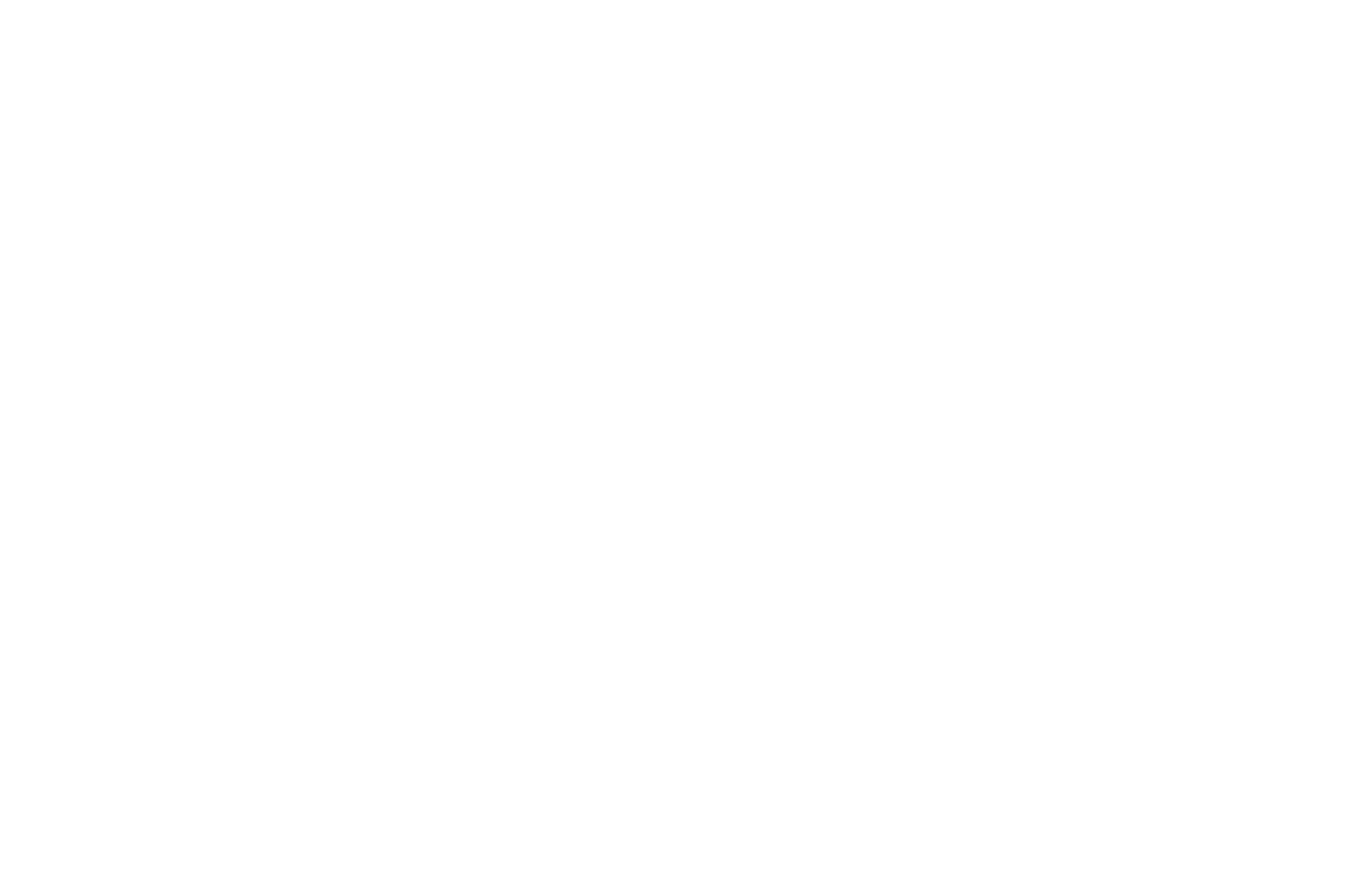 Johnny Z's Pizza
