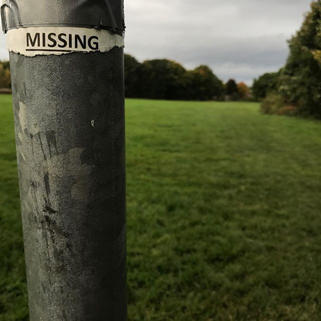 Missing missing poster
