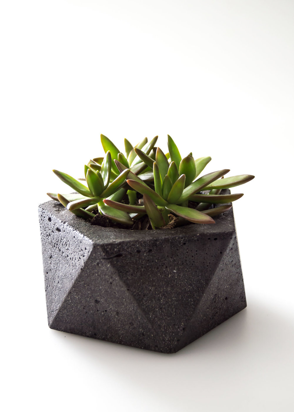 Valentine's Day Gift Guide for Him- Industrial Concrete Planter dish
