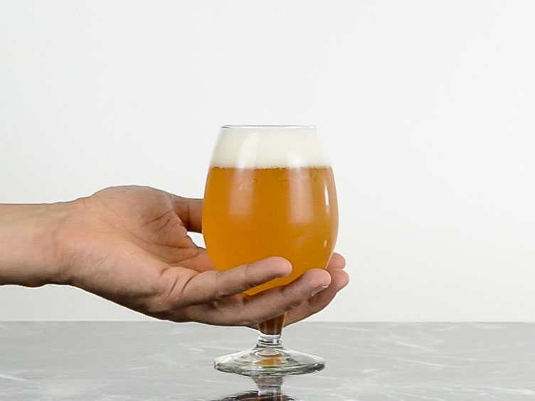 goblet  Beer Glass- Types of beer glass and how to choose the right one for your brew.jpg