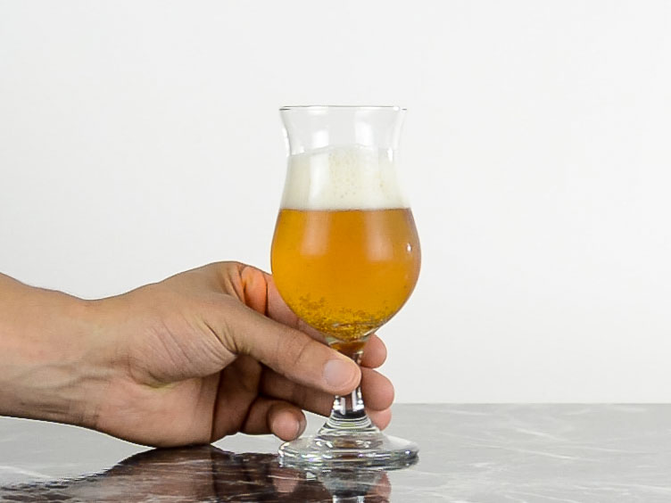 tulip  Beer Glass- Types of beer glass and how to choose the right one for your brew.jpg