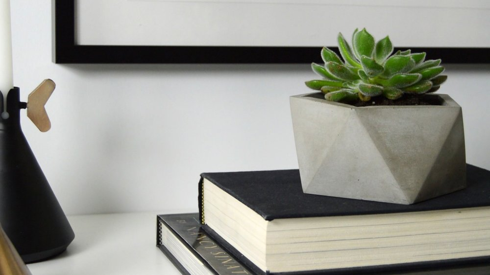 Natural Concrete Planter Catchall Dish By the Savvy Heart