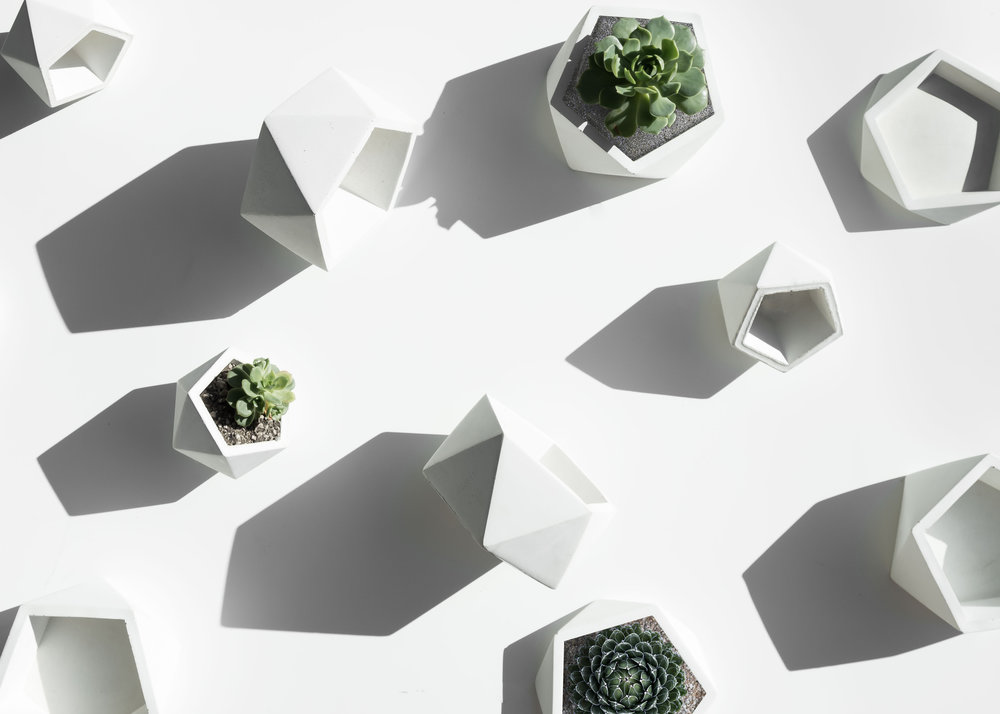 White Concrete Planter Pots for Succulent and Air Plant by The Savvy heart