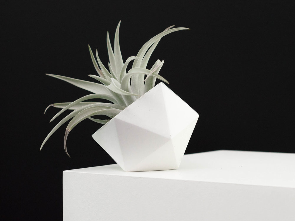 Geometric Air Plant Holder - Gift Guide Ideas for Mother's Day