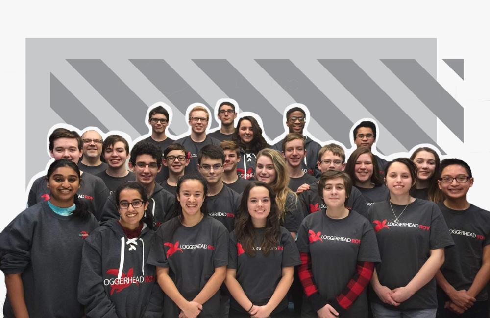 loggerhead 2019 team graphic.jpg.png