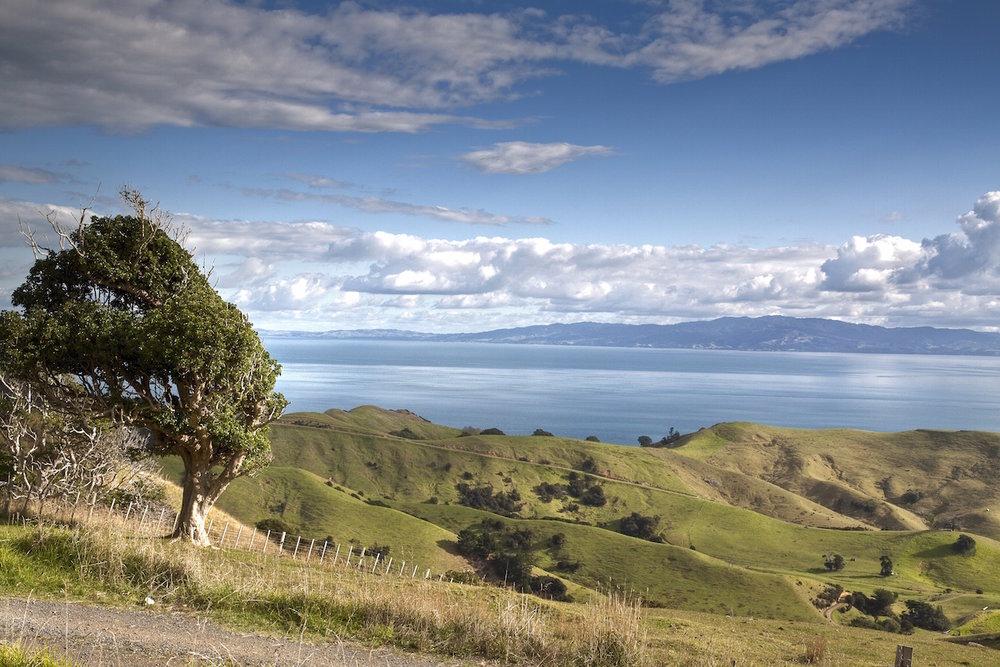 2 Coromandel Peninsula New Zealand____tonemapped copy.jpg
