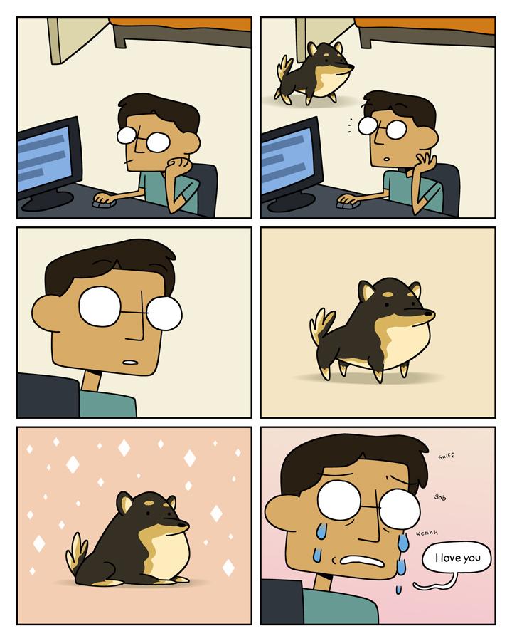 dogroomcomic.jpg