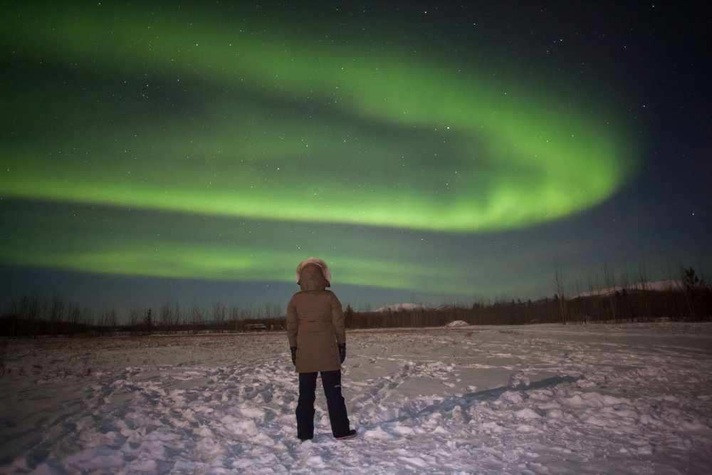 Northern Lights in Whitehorse, Yukon (photo by:  @infinitefit )