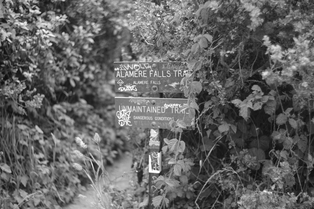Hiking signs for Alamere falls