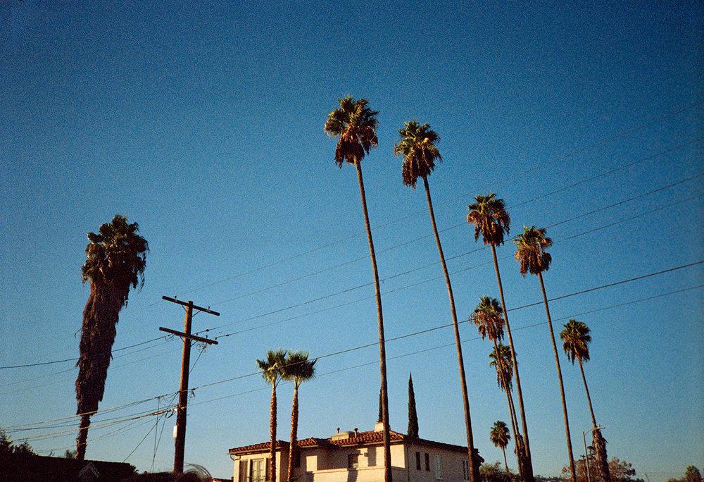 2017-California-Stephanie-Noritz-08.jpg