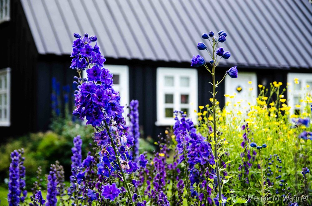 Botanical Garden Akureyri