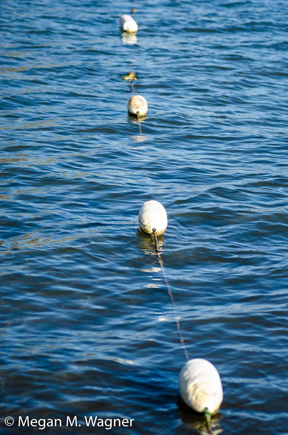 Lake Otsego