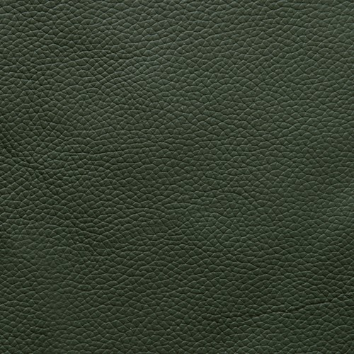 Green Leather.jpg