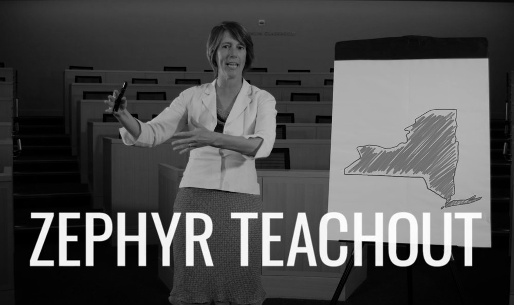 zephyr_teachout_videos.jpg