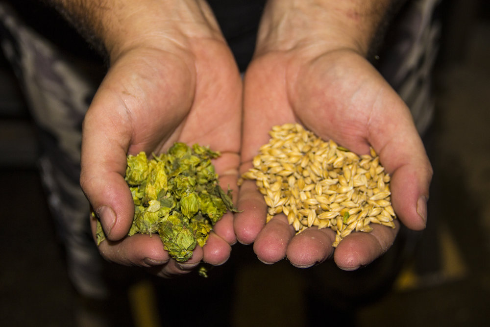 Local hops and malt sourced within 10 miles of Hired Hand Brewing Co. Vergennes, Vermont