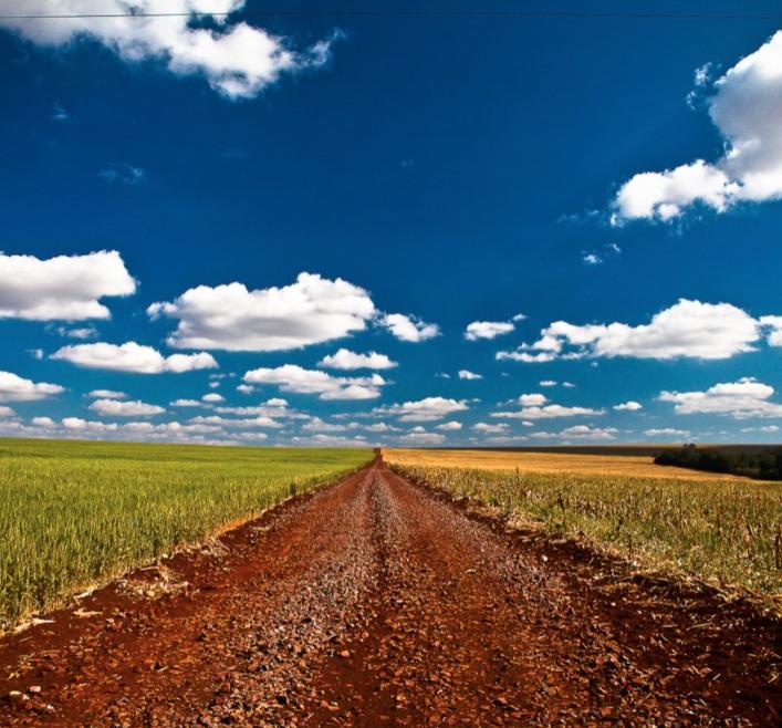 No Oeste do Paraná, preço da soja é a força que ergue e destrói riquezas