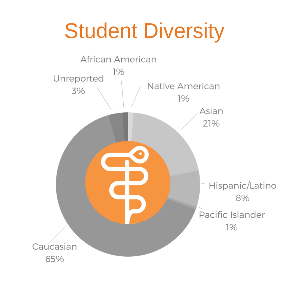 Student Diversity.png