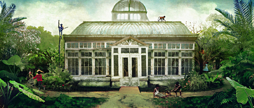 Illustration: Monkey Exhibit in Greenhouse (not filmed)