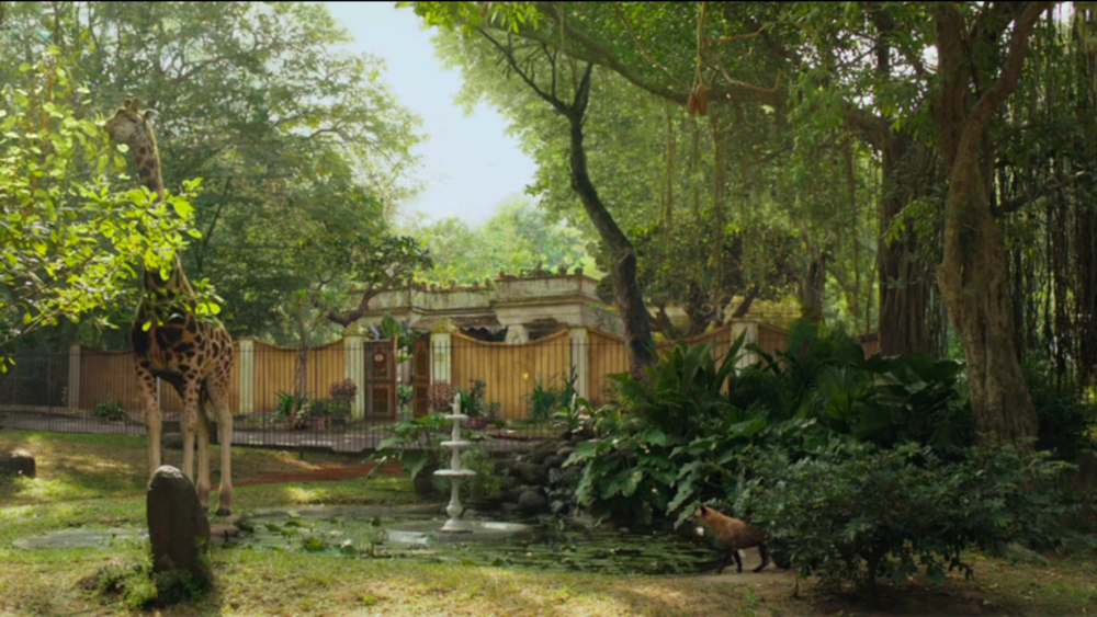 Final Film Frame - Patel House