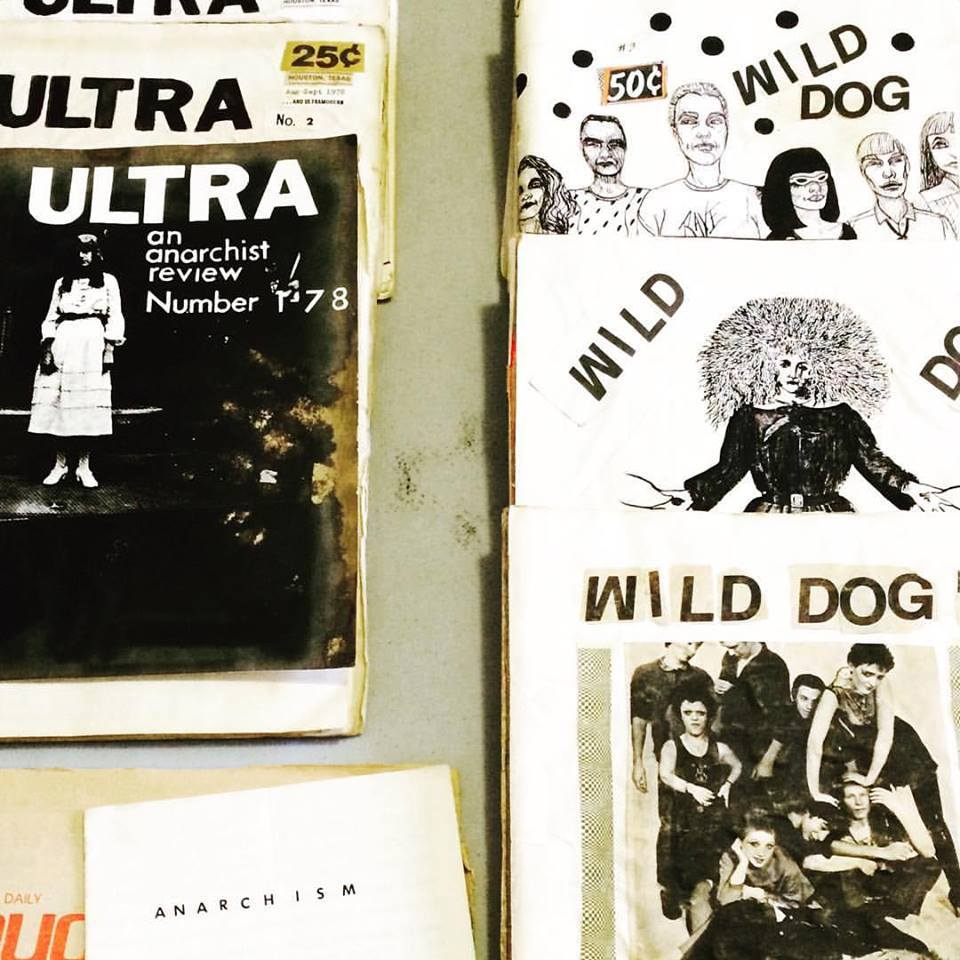 wild-dog-archives