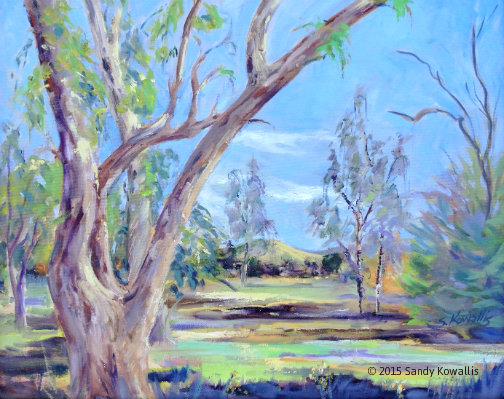 Eucalyptus in Autumn - oil 16 x 20