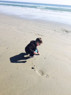 Jake collecting shells and rocks in an empty gum container - perfect for small treasures and hands!