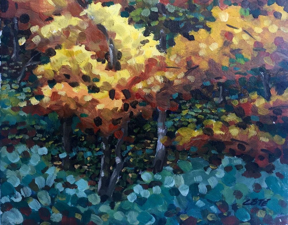 paysage_automne_h.jpg