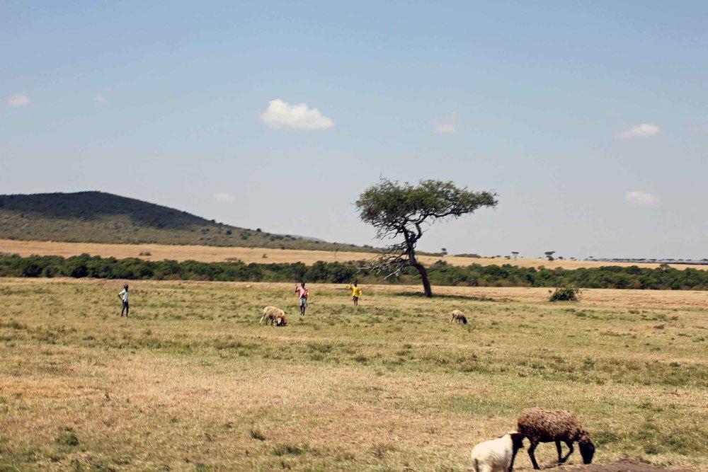 outofafricalowres5.jpg