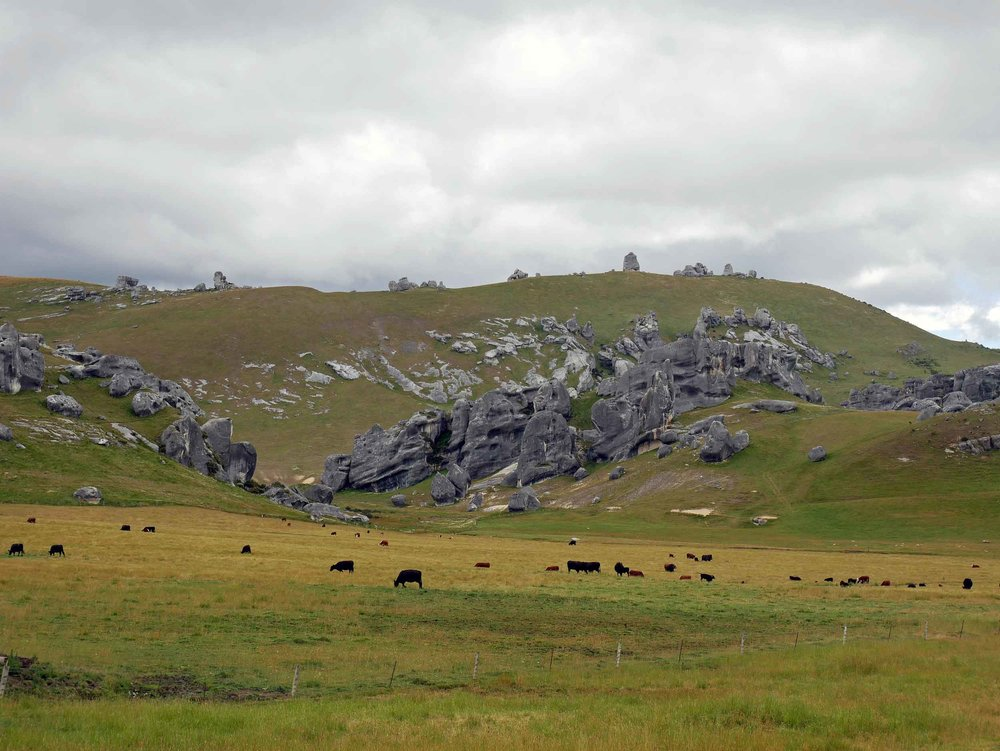 Crossing Arthur's Pass, we found Castle Hill, made up of giant limestone boulders that create the effect of a run down castle (Jan 4).