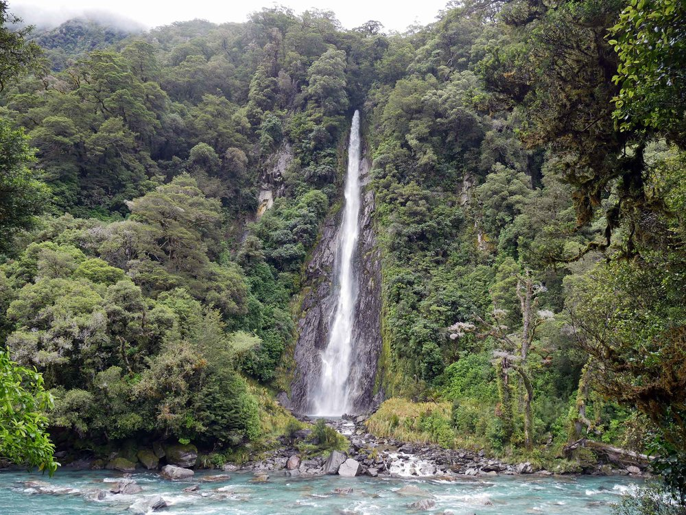 Driving from the West Coast to Queenstown along Haast Highway, we discovered one of New Zealand's tallest waterfalls (96 metres), Thunder Creek Falls (jan 7).