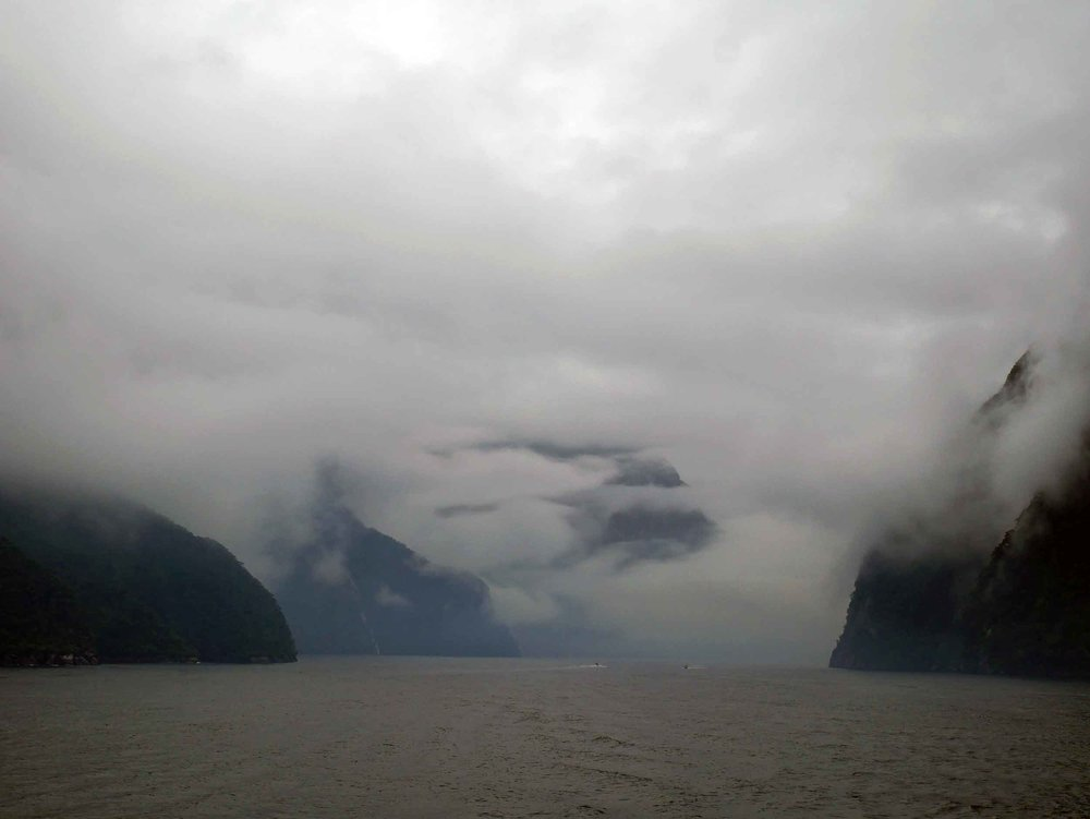 Known as one of the wettest areas in the world (with nearly 6.5 metres of rain annually), Milford Sound is home to seals, penguins and the earth's largest bottlenose dolphins (Jan 9).